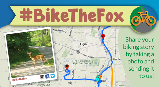 Bike The Fox
